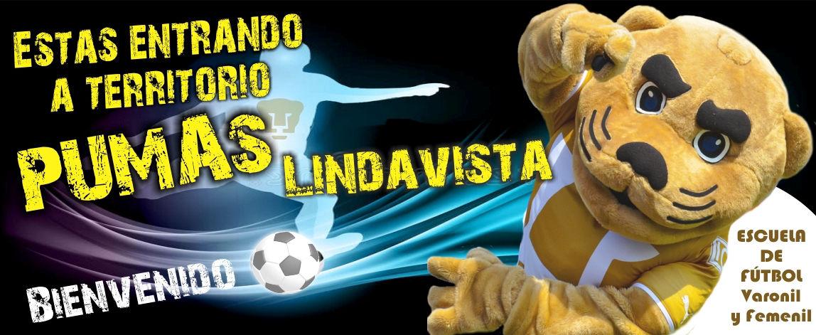 bomba Caso Biblia  Pumas Lindavista , la mejor escuela de fútbol, filial varonil y femenil  Pumas 1a. división